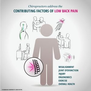 Low-back-pain-ajax-chiropractor