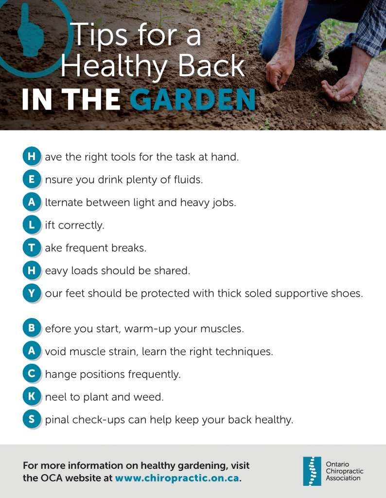 Tips for a Healthy Back while Gardening Ajax Chiropractors Ajax Massage Therapy